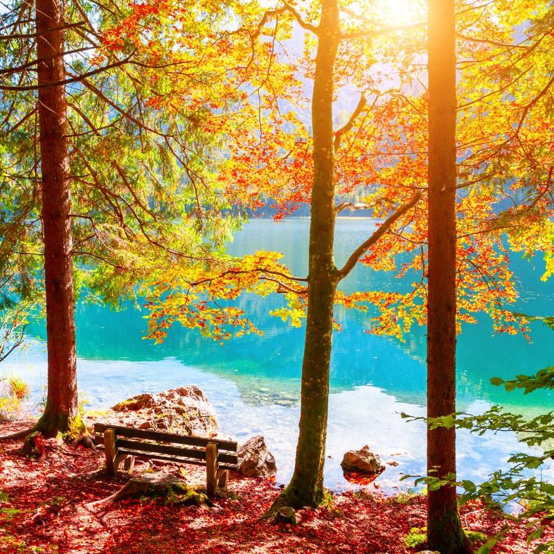 Autumn Lake - Ultra-Strong Fragrance Oil