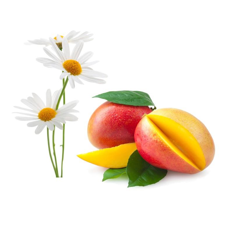 Daisy Sweet Mango - Ultra-Strong Fragrance Oil