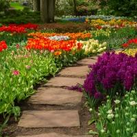 Fresh Garden Air - Ultra-Strong Fragrance Oil