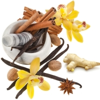 Ginger Orchid - Ultra-Strong Fragrance Oil