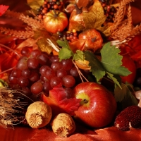 Harvest Gathering by BBW Type - Ultra-Strong Fragrance Oil