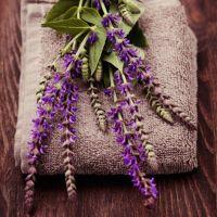Lavender Sage - Ultra-Strong Fragrance Oil