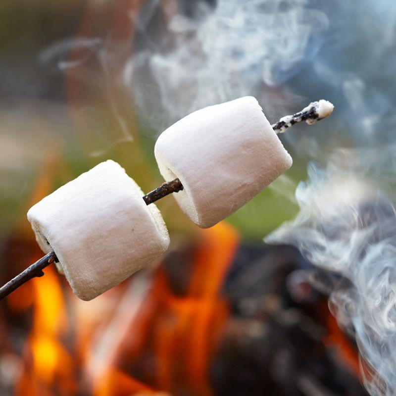 Marshmallow Fireside (Type) - Ultra-Strong Fragrance Oil