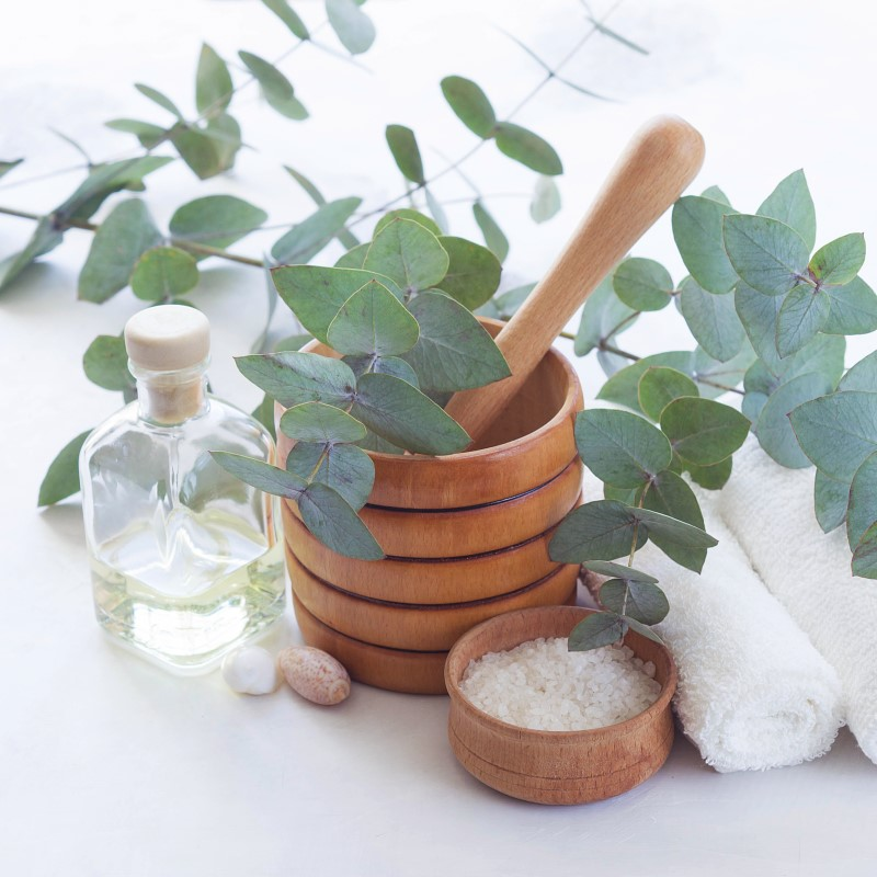 Peppermint Eucalyptus - Ultra-Strong Fragrance Oil