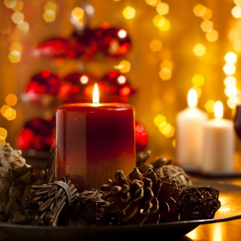 Pinecones and Amber - Ultra-Strong Fragrance Oil