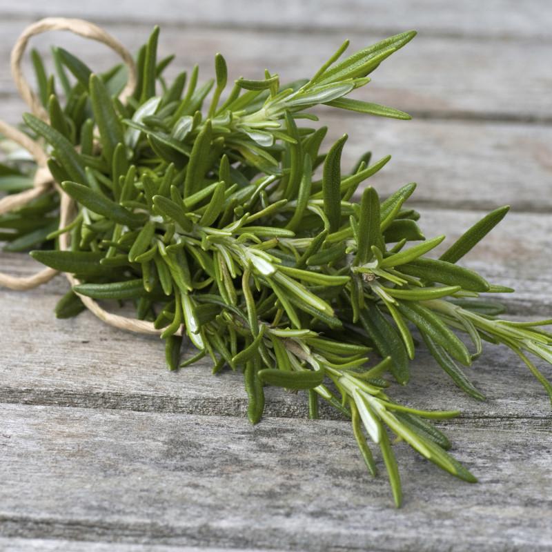 Rosemary - Ultra-Strong Fragrance Oil