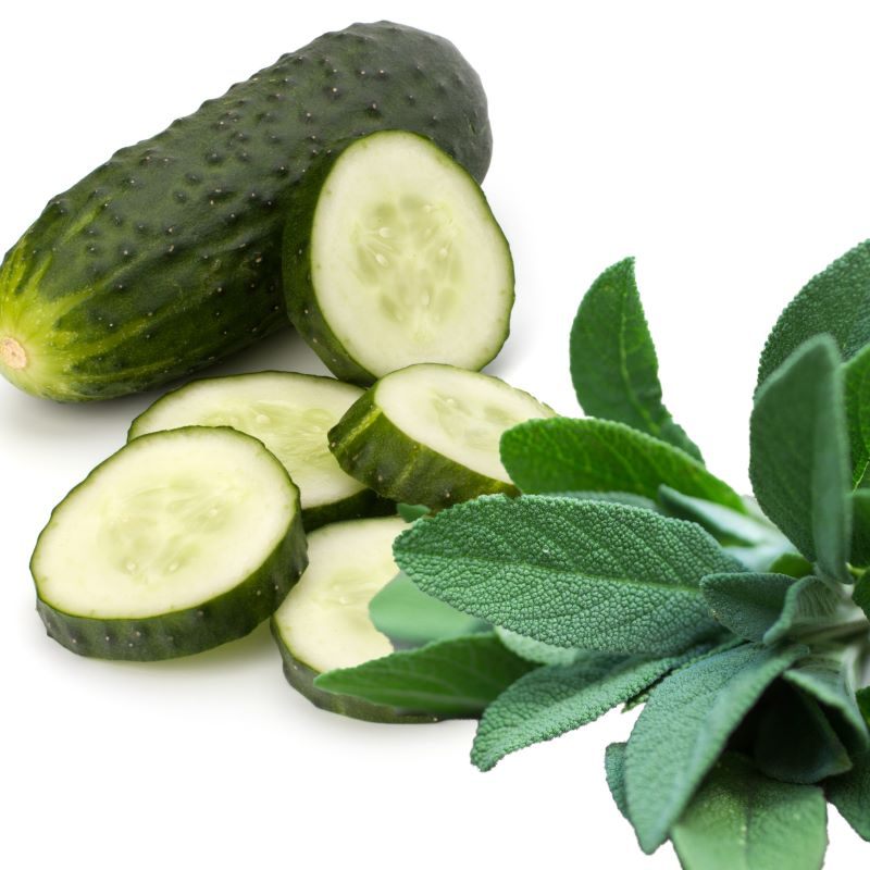 Sage & Cucumber - Ultra-Strong Fragrance Oil