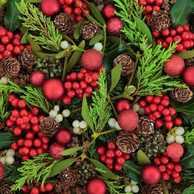Spruceberry - Ultra-Strong Fragrance Oil