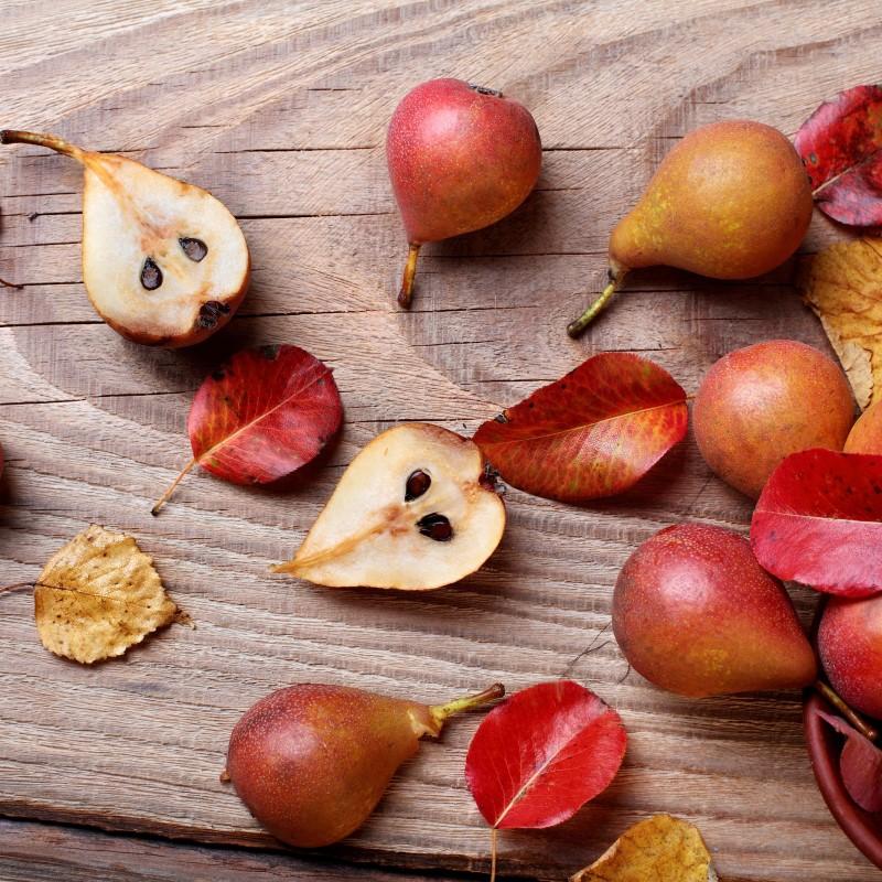 Warm Pear Cedar - Ultra-Strong Fragrance Oil