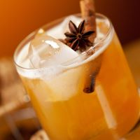 8oz Apple Cider & Spiced Rum - Ultra-Strong Fragrance Oil