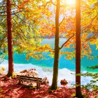 810355-N - Autumn Lake - Ultra-Strong Fragrance Oil