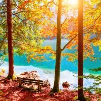 1oz Autumn Lake - Ultra-Strong Fragrance Oil