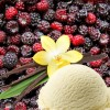 SFO296-N - Black Raspberry Vanilla - Soy Based Fragrance Oil