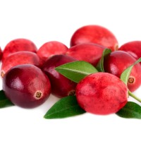 1oz Cranberry - Ultra-Strong Fragrance Oil