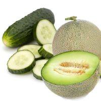 8oz Cucumber Melon - Ultra-Strong Fragrance Oil