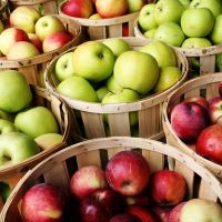 SFO316-N - Farmstand Apple (Type) - Soy Based Fragrance Oil