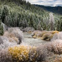 SFO252-16 - 16oz First Snow - Soy Based Fragrance Oil