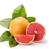 1oz Grapefruit - Ultra-Strong Fragrance Oil