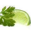 810292-N - Lime Cilantro - Ultra-Strong Fragrance Oil