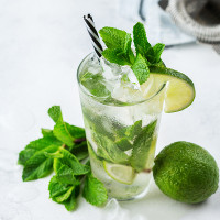 1oz Mint Mojito - Ultra-Strong Fragrance Oil