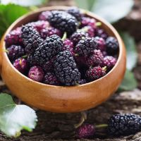1oz Mulberry - Ultra-Strong Fragrance Oil