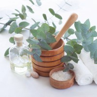 810344-N - Peppermint Eucalyptus - Ultra-Strong Fragrance Oil