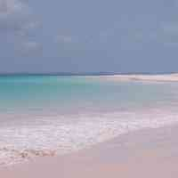 810312-N - Pink Sands Y (Type) - Ultra-Strong Fragrance Oil