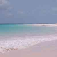 8oz Pink Sands Y (Type) - Ultra-Strong Fragrance Oil