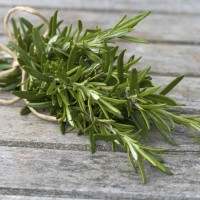 4oz Rosemary - Ultra-Strong Fragrance Oil