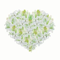 810185-N - Tuberose and Jasmine - Ultra-Strong Fragrance Oil
